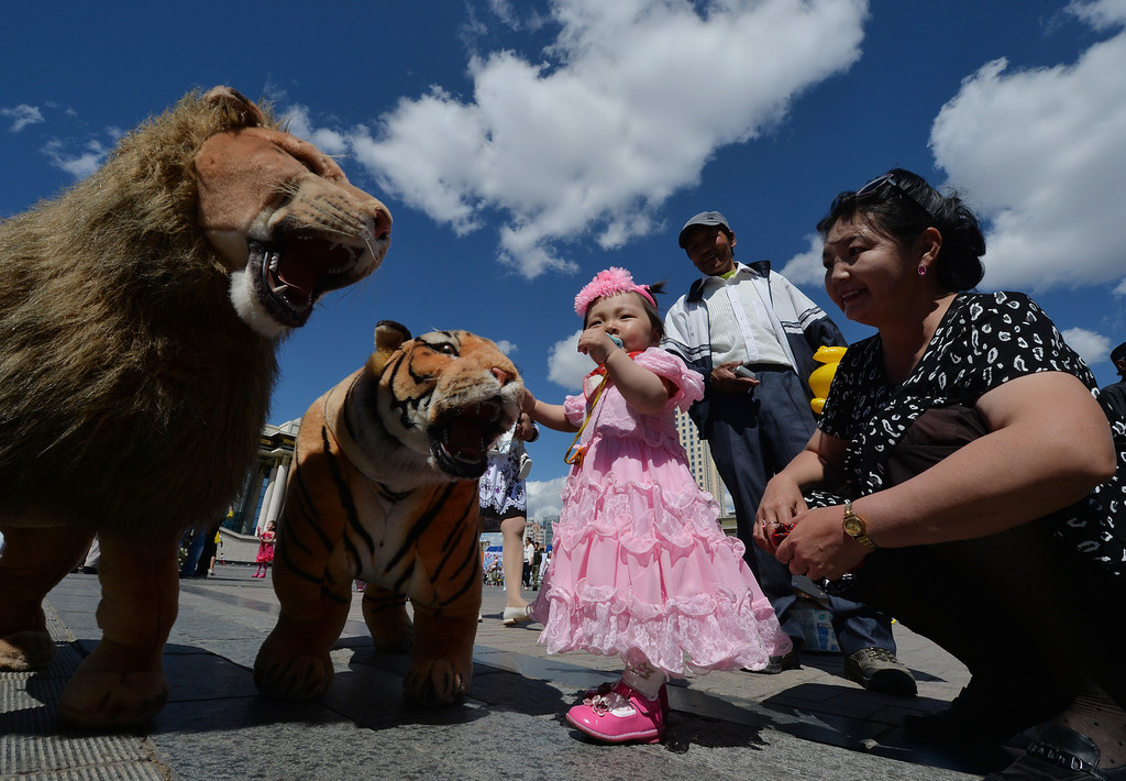 . A Mongolian child plays with a toy lion and tiger on Sukhbaatar Square in Ulan Bator, Mongolia on June 2, 2013. The country is in the middle of a resources boom with the huge copper and gold Oyu Tolgoi soon to open and which will provide vast revenues for the government that can be spent on infrastructure and education if corruption can be kept in check. MARK RALSTON/AFP/Getty Images
