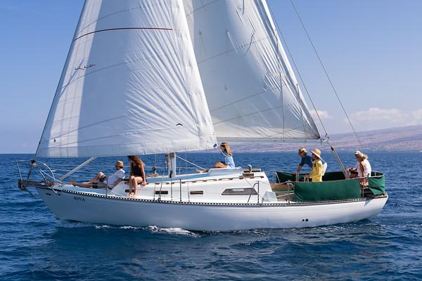 Kohala Sail and Sea