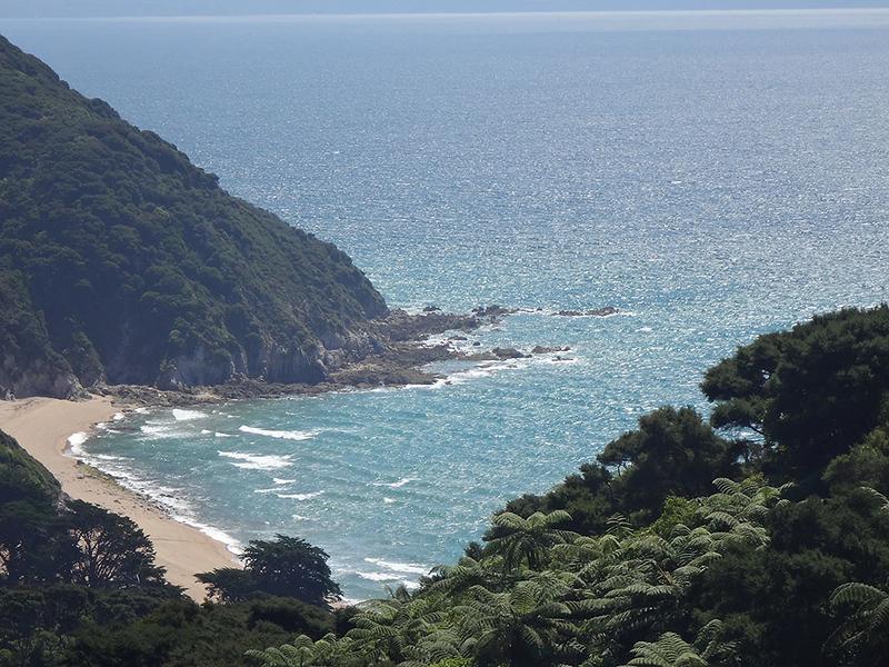 Whariwharangi Bay