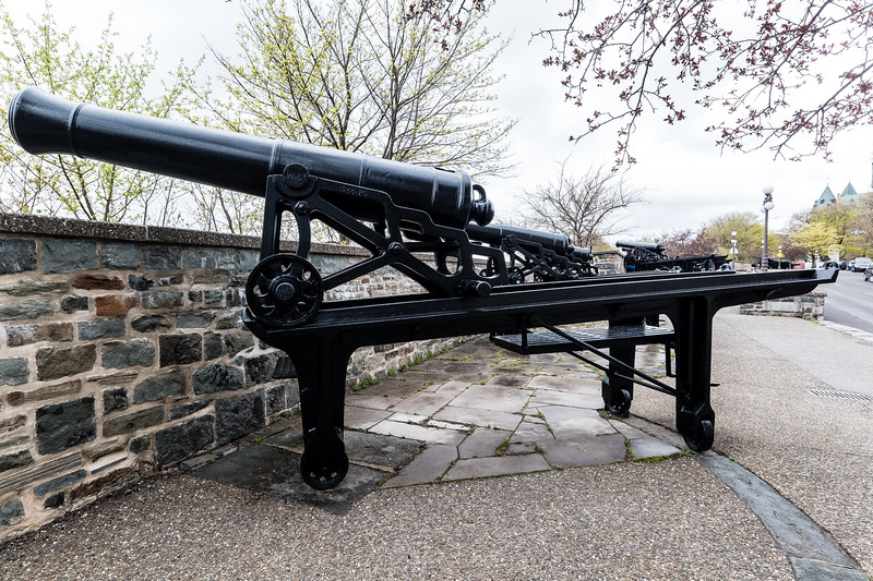 Canons On The Ramparts