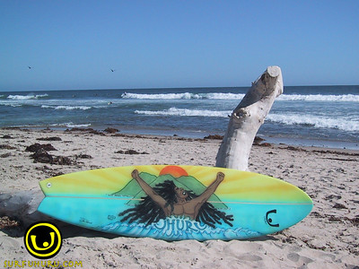 Surfboards Photos