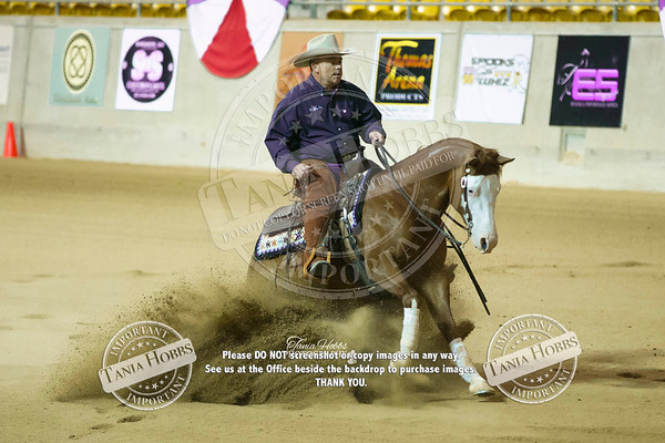 Reining National Show 2017