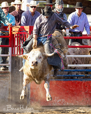Bull Riding  Barriere 2011