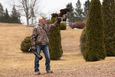 Hawk Training Session