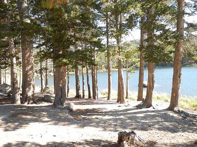 9-2012 Tahoe Rock Gardens