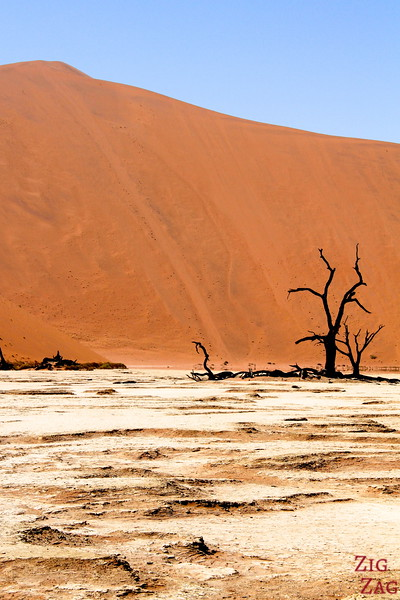 Deadvlei dead lake, Namibia photo 3