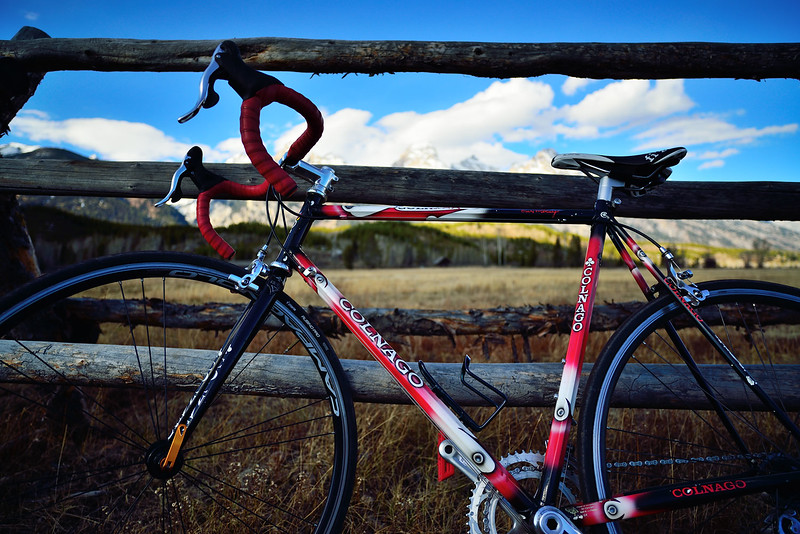 Colnago-by-the-fence.jpg