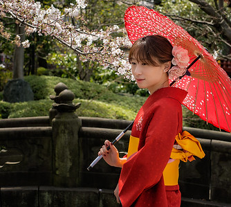 Girl with Cherry Blossoms and Parasol, Asakusa Kannon Temple, Japan - 2014