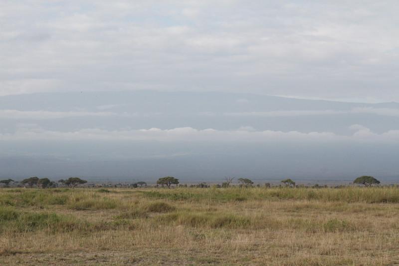 Kenya 2019 #2 565.JPG