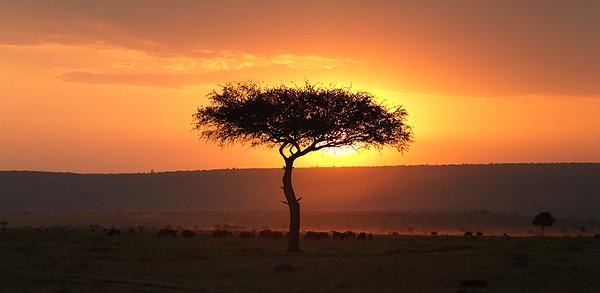 KENYA 2009