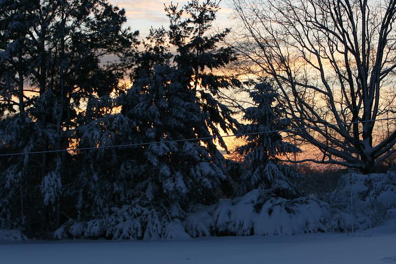 snow 2010 feb IMG_2387 (13).JPG
