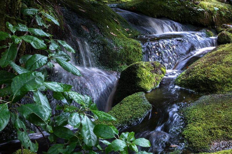 falling stream near caves-1.jpg
