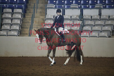 sun 112. APHA - Yth Hunt Seat Eq 13 & under