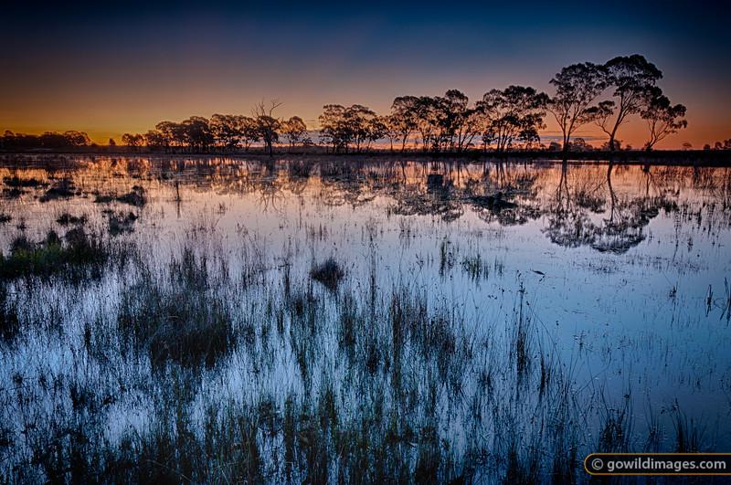 Waranga Basin wetlands at sunset