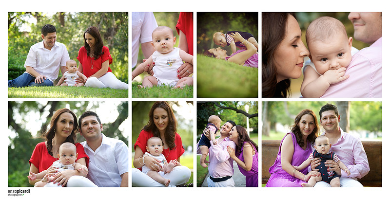 collage_olivos_05.jpg