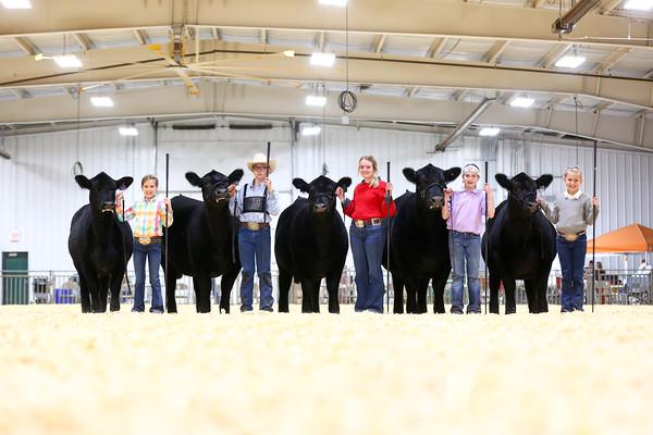Oklahoma Beef Expo