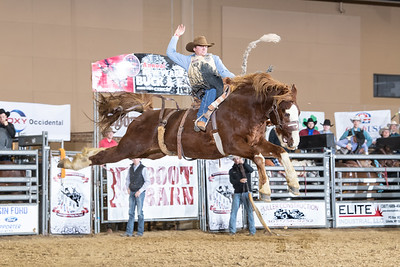 Gillette Burch Futurity 12-30-19