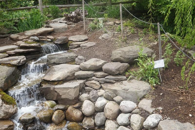 Reeves-Reed Arboretum 29.jpg