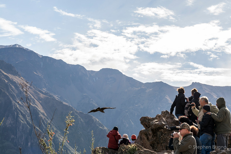 Colca Canyon-1219.jpg
