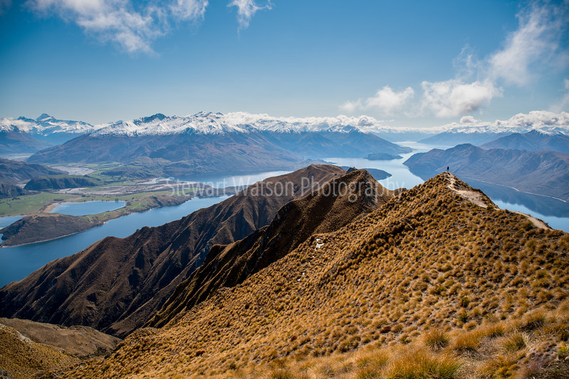 Feels like standing on the top of ythe world at Roys Peak Track