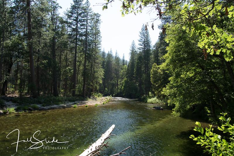 Yosemite 2018 -102.jpg