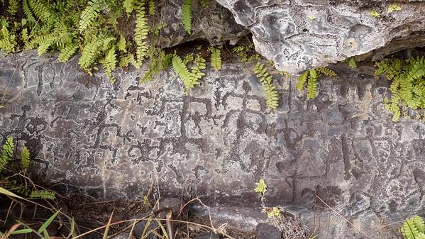 Hilina Pali Cave 2/2015