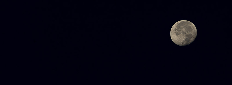 015-moon-wdsm-08sep17-851x315-007-1433