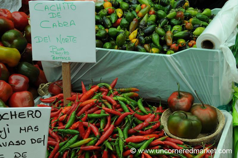 Spicy Chilies - Mistura Gastronomy Festival in Lima, Peru