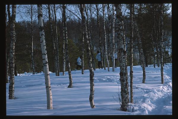 Battaglione Alpini Susa 1988 - Pinerolo, Norvegia / Norway, Valle Argentera, Germagnano