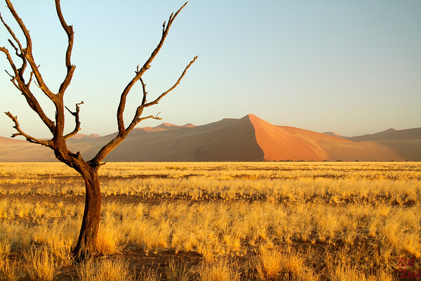 Best photo Namibia: Sunrise at Sossusvlei Sand Dunes