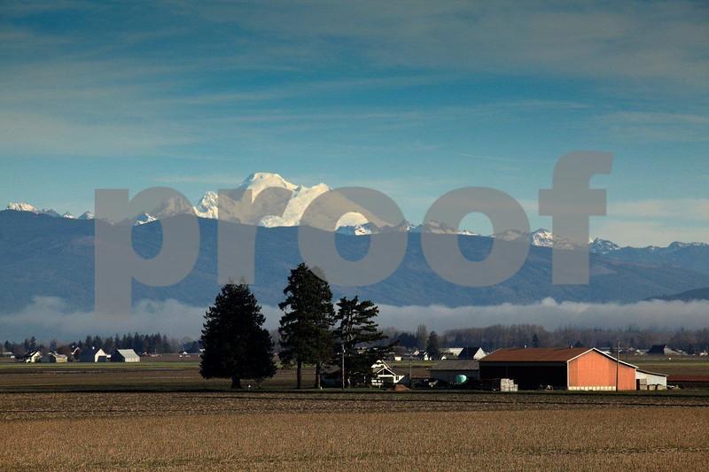 Farm & Mt. Baker 0238.jpg