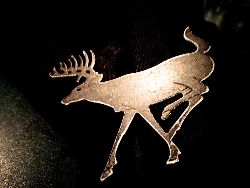 montana deer.jpg