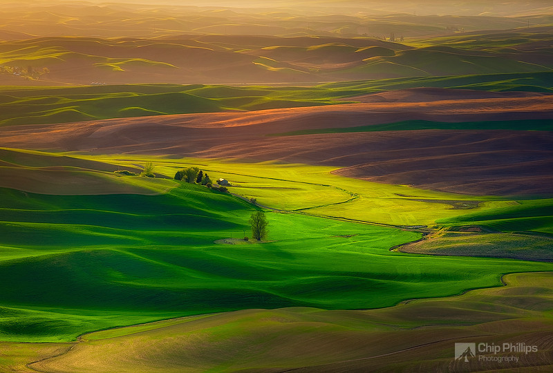 """""""Farmhouse in Spring Palouse""""  A spring view from up on Steptoe Butte in the Palouse Region of Washington State."""