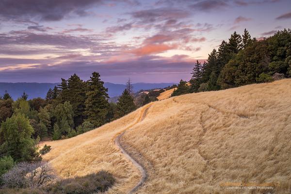 California: Bay Area Landscapes