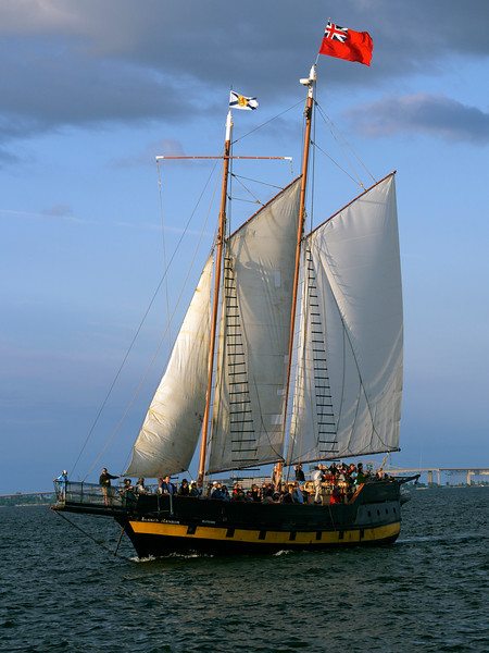 Tall Ship on the Harbour _1090208.jpg