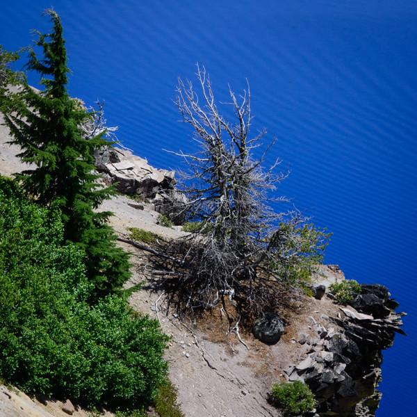crater-lake-120.jpg