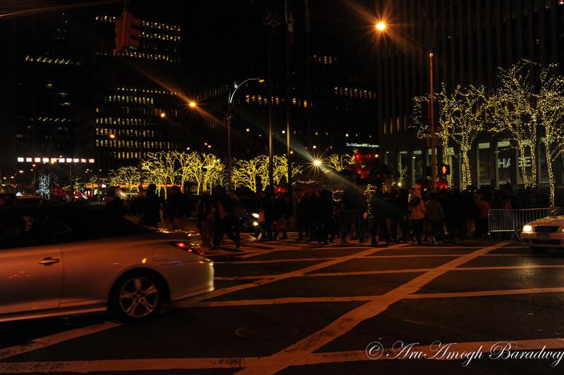 2012-12-23_XmasVacation@NewYorkCityNY_238.jpg