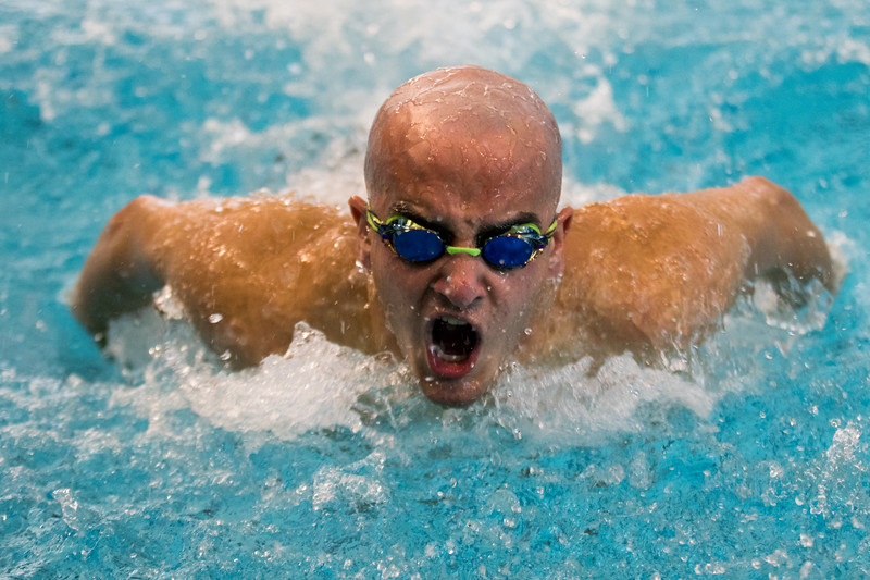 Men and Women Swimming