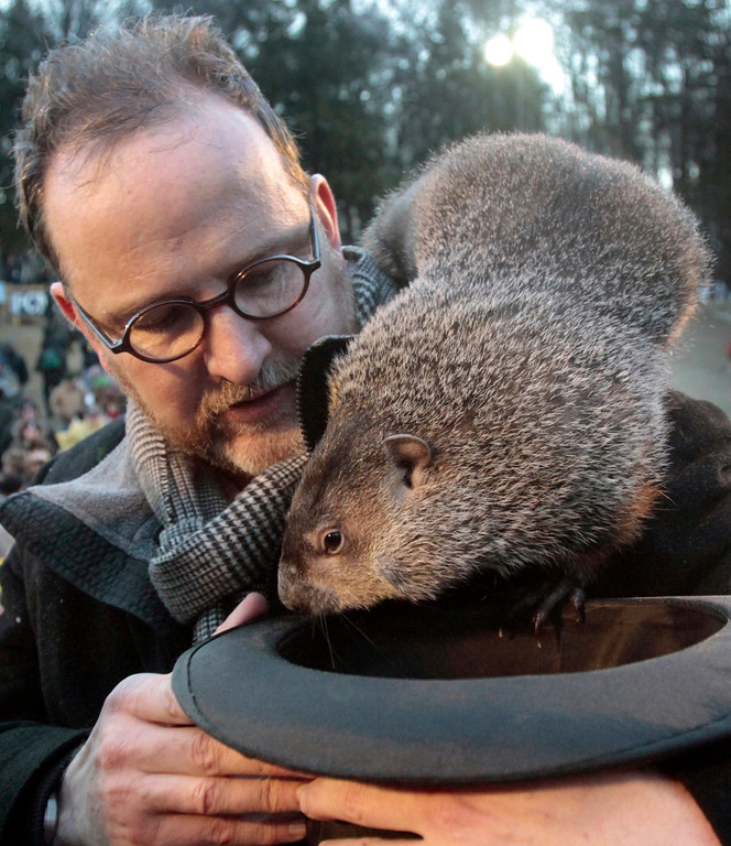 . ** FILE** In this file photo from Feb. 2, 2011, Punxsutawney Phil, the weather predicting groundhog, crawls off the shoulder of handler Ben Hughes during the annual Groundhog Day festivities in Punxsutawney, Pa. The Groundhog Club claimed that Phil did not see his shadow last year and predicted that winter had ended. This year, the unseasonably warm temperatures and a marked lack of snow this year would seem to put less pressure on Phil. The central Pennsylvania groundhog is set to make his annual weather prediction on Thursday just before 7:30 a.m. (AP Photo/Keith Srakocic/FILE)
