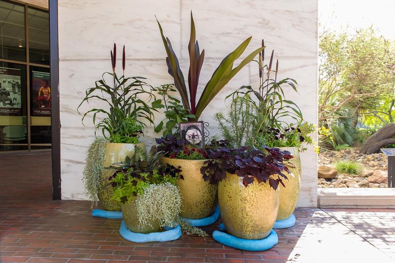 October 02, 2015-Stark Muesum  'Wicked Plants'-LAT_6854.jpg