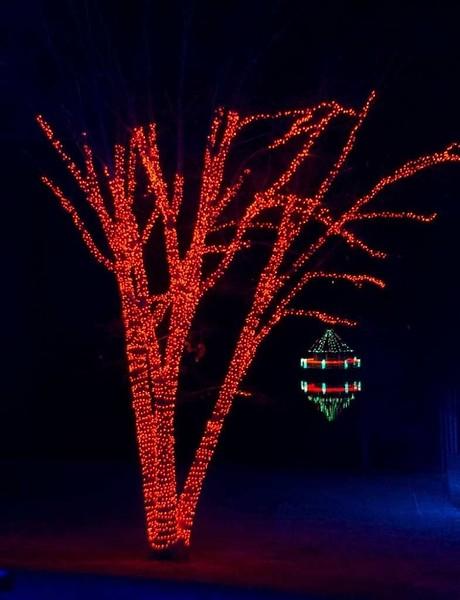 Meadowlark Gardens - December