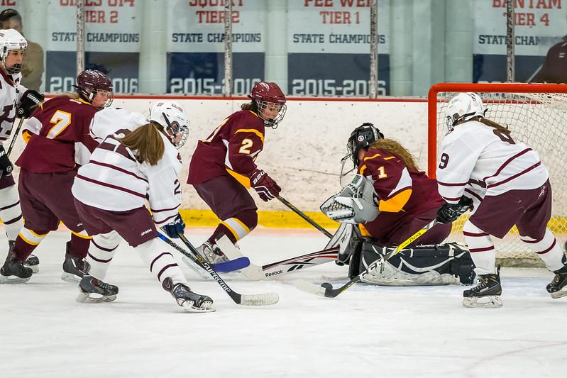 HHS GIRLS HOCKEY VS LEBANON 2-170.jpg