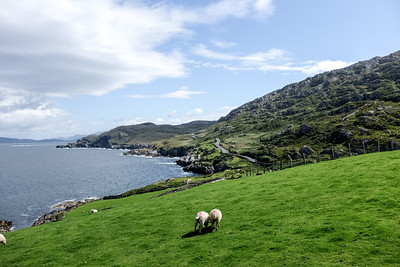 Beara Peninsula, Co. Cork