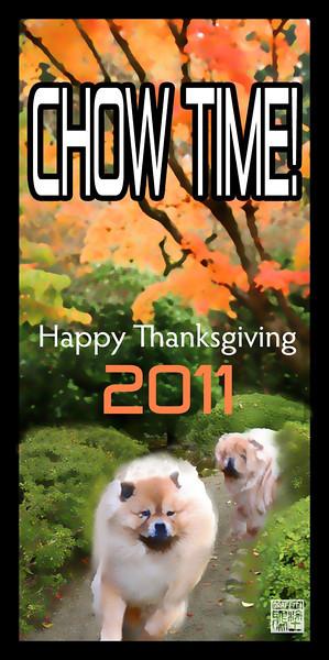 HAPPY THANKSGIVING 2011s.jpg
