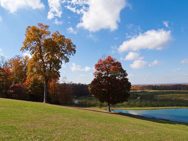 Mapleside farm fall 2010