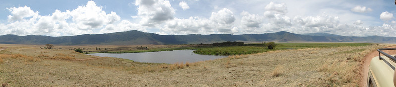 East Africa Safari 445.jpg