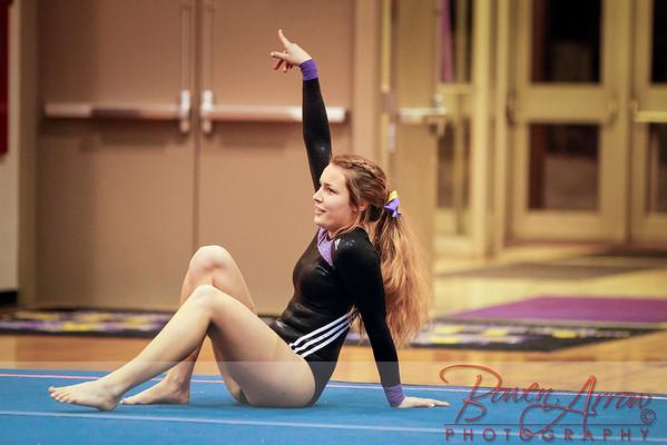 Gymnastics Senior Night 2-26-2014