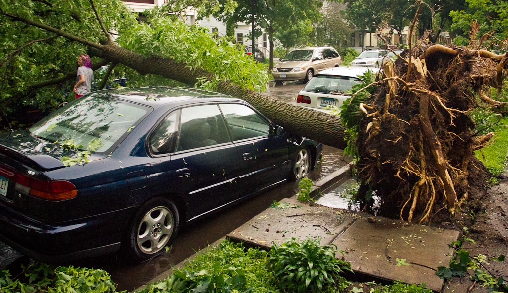 . A car is crunched by a fallen tree in South Minneapolis. Photo: Ryan Coleman