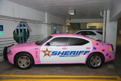 Virginia Sheriffs' Association  Conference 2013