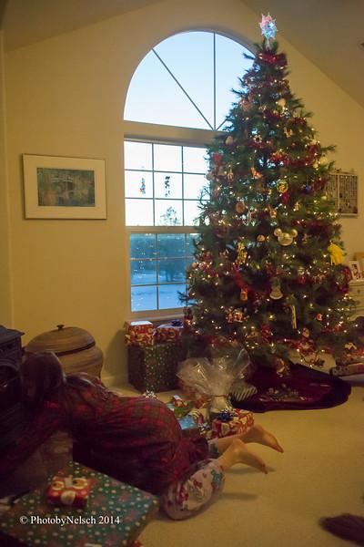 Christmas 2014-182.jpg